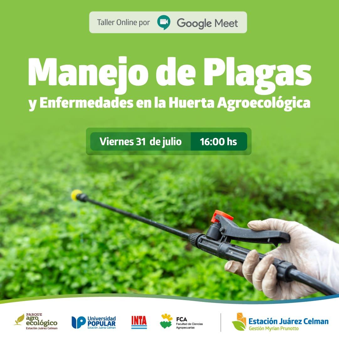 taller gratuito online de capacitacion manejo de plagas y enfermedades en la huerta agroecológica estacion juarez celman gestion myrian prunotto